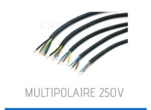 multipolaire-250v